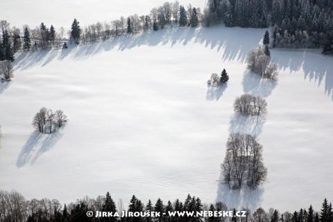 Zimní stromy /J71