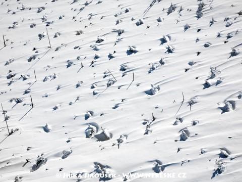 Debrník u Prášil v zimě /J66