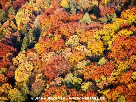 Podzim v Českém krasu J49