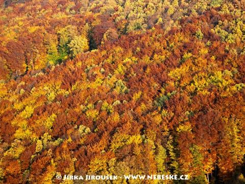 Podzimní barvy Českého krasu /J50