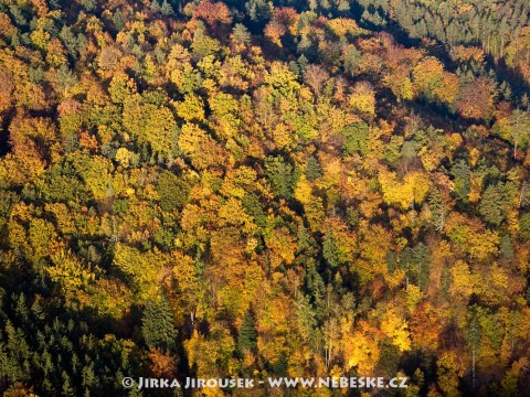 Podzim správně vybarvený /J34