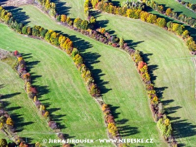 Podzimní krušnohorská louka /J145