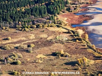 Břehy rybníku Olšina /J454