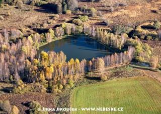 Rybníček nedaleko Olšiny /J455
