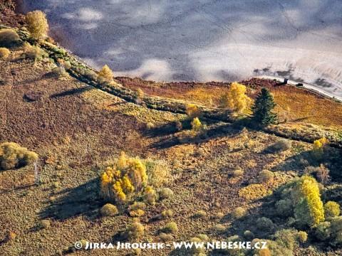 Břeh rybníku Olšina v Boleticích /J456