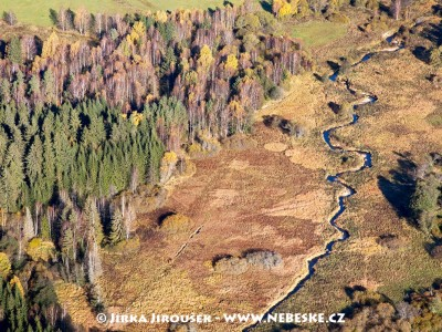 Potok Olšina /J461
