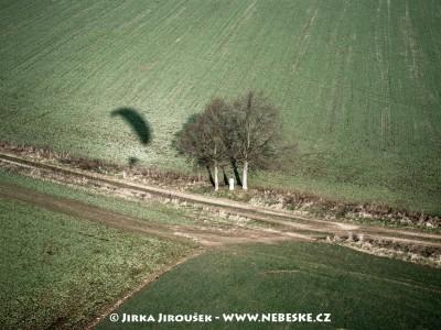 Křížek pod stromy u Miřetic /J228