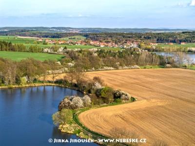 Kotenčice a rybníky Pilka a Hluboký /J194