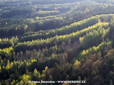 Brdský les na jaře – u Pičína /J195