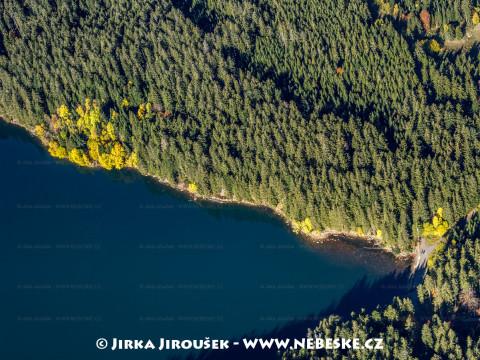Černé jezero detail /J1018