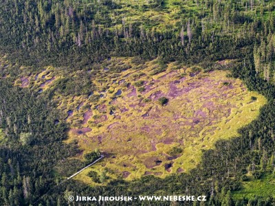 Rašeliniště Jizerky – rezervace /J366