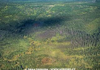 Pavlova planina, rezervace Klečové louky, říčka Bílá Smědá /J374