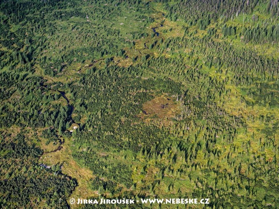 Bílá Smědá, rašeliniště na Pavlově planině /J375