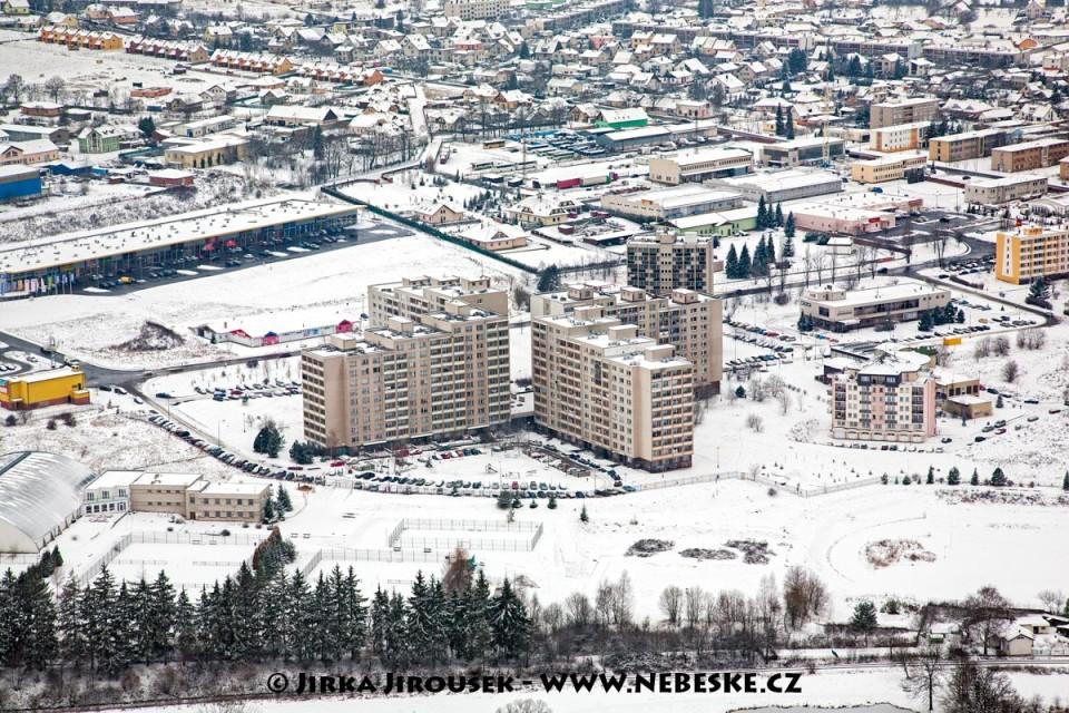 Fialka v zimě, Příbram /J934