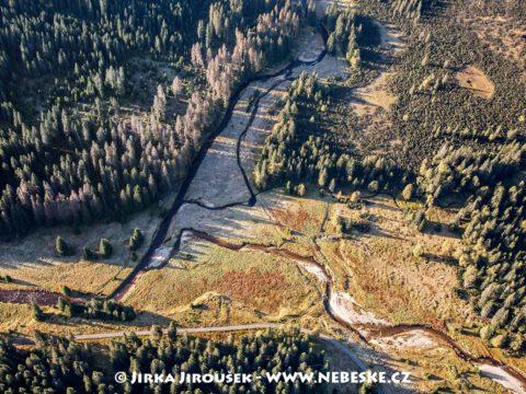 Soutok Roklanského a Javořího potoka, u soutoku Šárecká slať