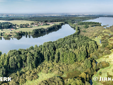 Rybníky Vítek a Rožmberk