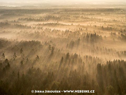 CHKO Třeboňsko brzy ráno v září