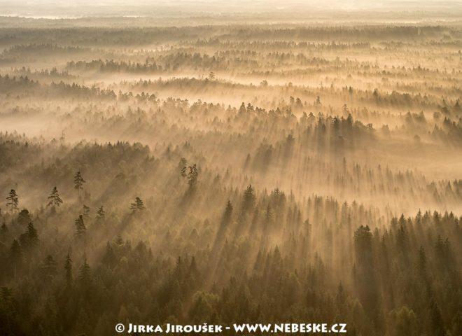 CHKO Třeboňsko brzy ráno v září J1517