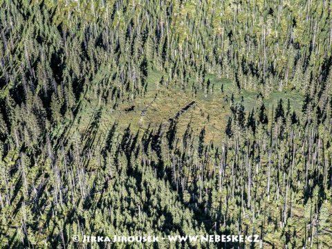 Luzenské údolí – Březová slať J1557