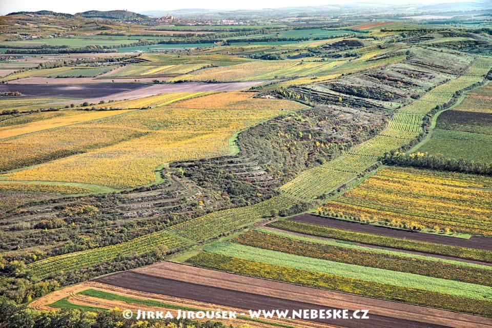 Národní přírodní památka Dunajovické kopce J1658