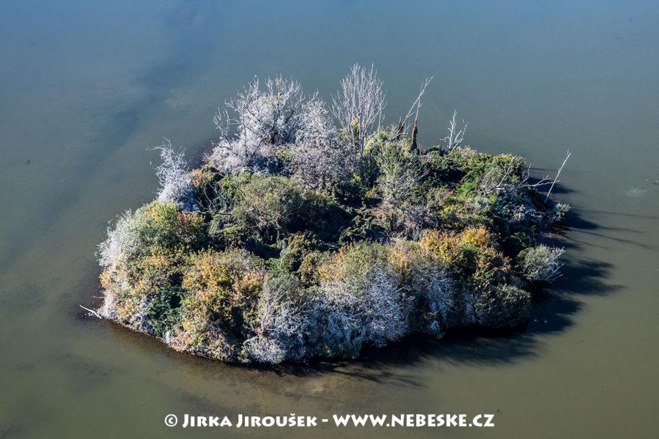 Ptačí ostrov u Mušova J1671