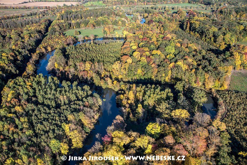 Zámecká Dyje podzimní J1823
