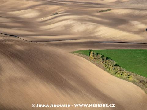 Podzimní pole u Velkých Pavlovic J2059