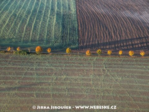 Podzimní cesta a pole J2782