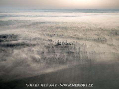 Mlhy na Třeboňsku J3037