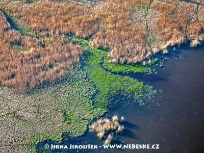 Padrťské rybníky, detail J3006
