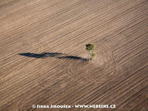 Strom na poli u Rakovníka J2792