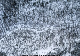 Pramen Teplé Vltavy na Šumavě 2016 J3177