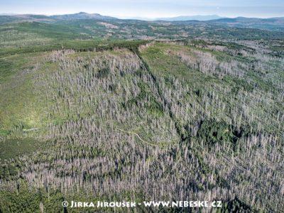 Pramen Teplé Vltavy, Černá hora, 2017, J3181