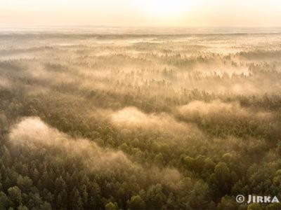 Ranní mlhy nad Třeboňskem J3197