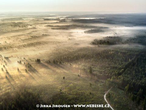 Lesy a mhy na Třeboňsku J3290