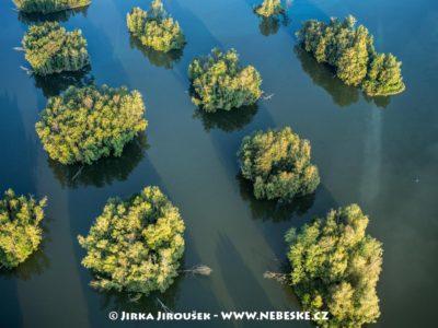 Ostrůvky – Staré jezero J3260