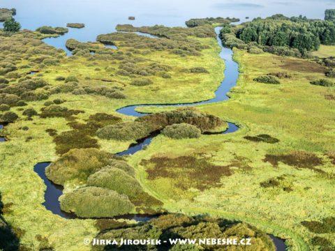 Rybník Rožmberk  vtok Lužnice J3315