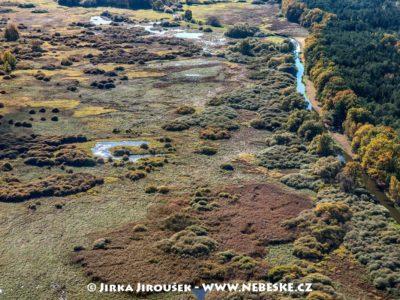 Národní přírodní rezervace Stará a Nová řeka J3285