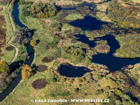 Národní přírodní rezervace Stará a Nová řeka J3286