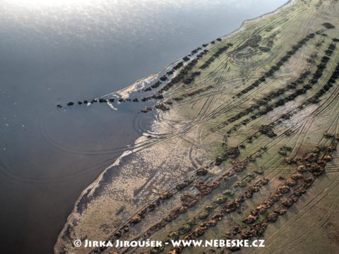 Krmení ryb na Třeboňsku J3252