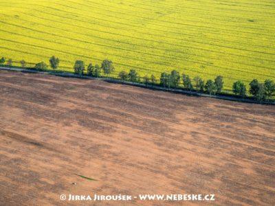 Kardašova Řečice – pole a cesta J3256